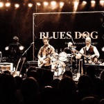 Blues Dog (NL)